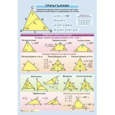 Triangle. Congruent triangles